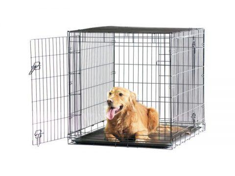 cage pliable pour chien steplus. Black Bedroom Furniture Sets. Home Design Ideas